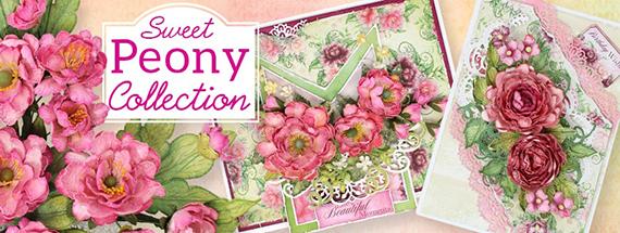 Sweet Peony 1 banner
