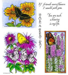 no-097-bee-balm-butterflies-black-swallowtail-coreopsis